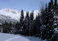 Glacier National Park, British Columbia, Canada CM11-20