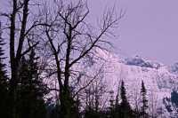 Glacier National Park, British Columbia, Canada CM11-33