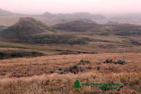 Grasslands National Park - East Block, Saskatchewan, Canada CMX-005