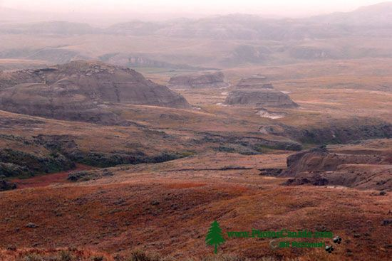 Grasslands National Park - East Block, Saskatchewan, Canada CMX-006