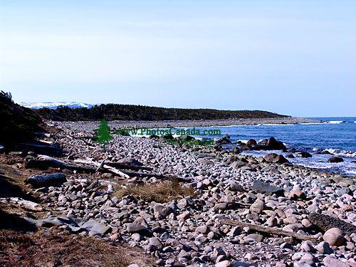 Gulf of St. Lawrence, Gros Morne National Park, Newfoundland, Canada 17