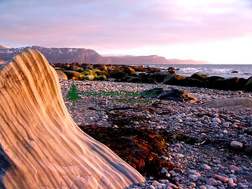 Gulf of St. Lawrence, Shoreline, Gros Morne National Park, Newfoundland, Canada 15