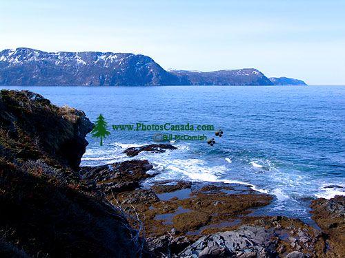 Lobster Cove, Gros Morne National Park, Newfoundland, Canada 13