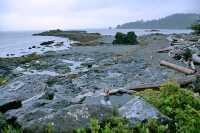 Hotspring Island, Gandll K'in Gwaay Yaay, Watchmen House, Haida Heritage Site, Gwaii Haanas National Park Reserve, British Columbia, Canada CM11-003