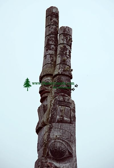 Haida Totem Pole Photos, Old Massett, Skidegate, Queen Charlotte Islands, Haida Gwaii, British Columbia, Canada CM11-07