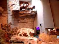 Head Smashed In Buffalo Jump, UNESCO World Heritage Site, Alberta, Canada 04