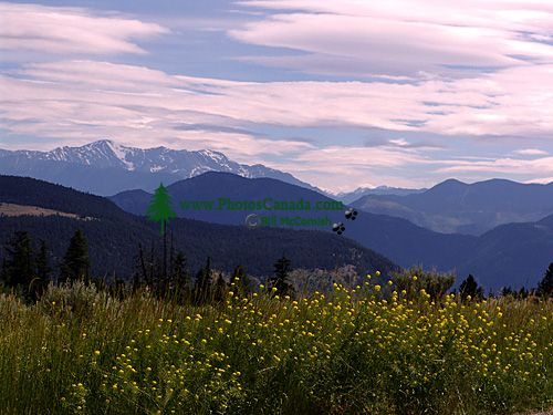 Diamond S Ranch, British Columbia, Canada 03