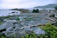Hotspring Island, Gwaii Haanas National Park, British Columbia, Canada CM11-010