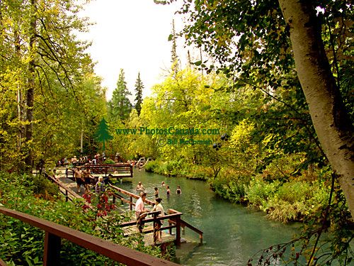 Liard River Hot Springs, Alaska Highway, Northern British Columbia, Canada CM11-009