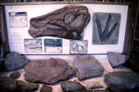 Hudsons Hope Museum, British Columbia CM11-03