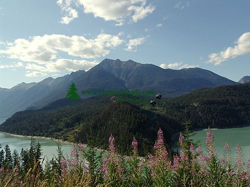 Hurley Pass, Pemberton Valley, Gold Bridge, British Columbia, Canada  05