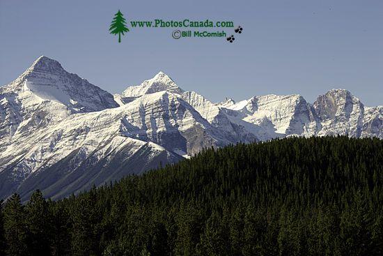 Icefields Parkway, 2011, Banff & Jasper National Parks, Alberta, Canada CM11-001