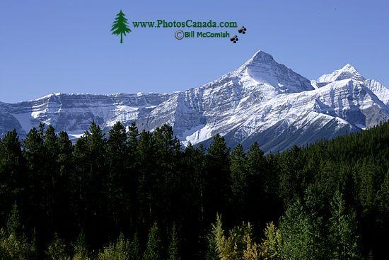 Icefields Parkway, 2011, Banff & Jasper National Parks, Alberta, Canada CM11-002