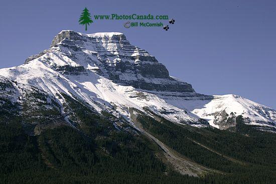 Icefields Parkway, 2011, Banff & Jasper National Parks, Alberta, Canada CM11-006