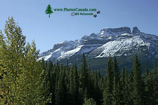 Icefields Parkway, 2011, Banff & Jasper National Parks, Alberta, Canada CM11-008
