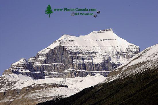 Icefields Parkway, 2011, Banff & Jasper National Parks, Alberta, Canada CM11-009