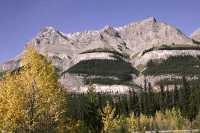 Icefields Parkway, 2011, Banff & Jasper National Parks, Alberta, Canada CM11-054