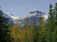 Icefields Parkway, 2011, Banff & Jasper National Parks, Alberta, Canada CM11-058