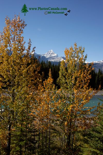 Icefields Parkway, Fall 2010, Banff and Jasper National Parks, Alberta, Canada CM11-003