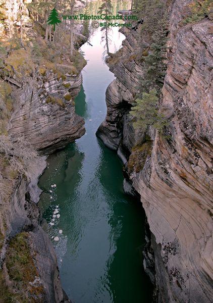 Athabaska Falls, Icefields Parkway, Spring 2009, Jasper National Park, Alberta CM11-06