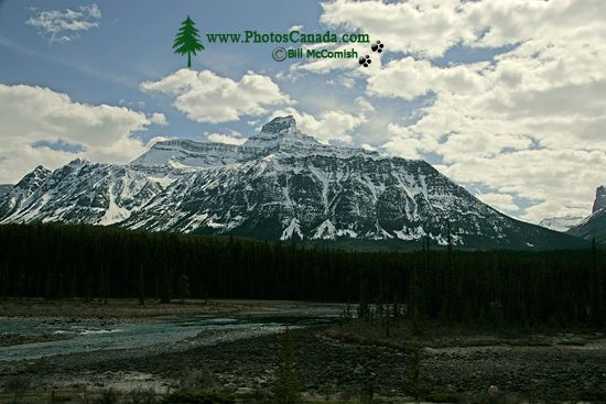 Icefield Parkway, Banff National Park CM11-005