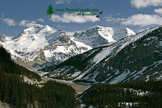 Icefields Parkway, Jasper National Park CM11-006