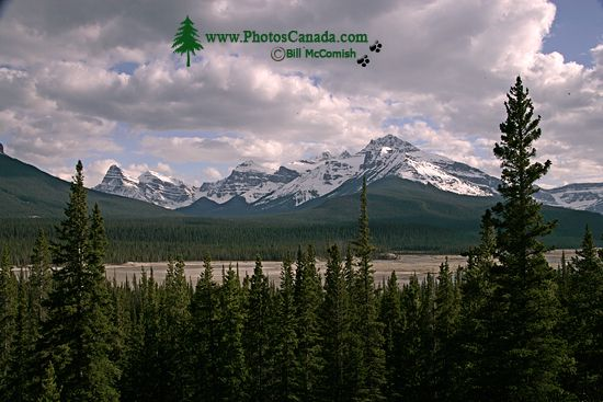 Icefields Parkway, Banff National Park CM11-007
