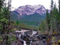 Athabaska Falls, Icefields Parkway, Jasper National Park, Alberta, Canada 10