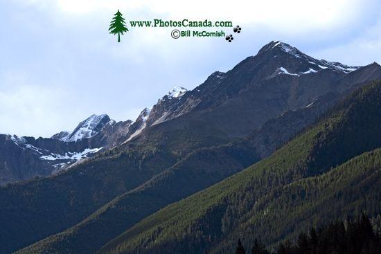 Jumbo Pass Region, Kootenay Rockies, British Columbia, Canada CM11-003