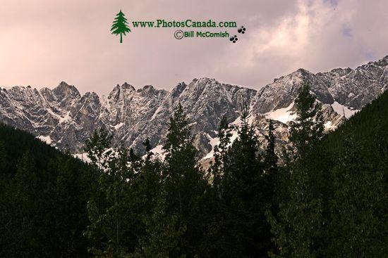 Jumbo Pass Region, Kootenay Rockies, British Columbia, Canada CM11-008