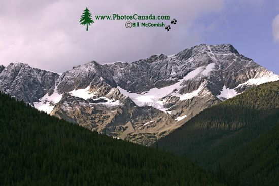 Jumbo Pass Region, Kootenay Rockies, British Columbia, Canada CM11-009