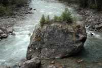 Jumbo Pass Region, Kootenay Rockies, British Columbia, Canada CM11-025