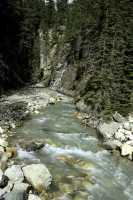 Jumbo Pass Region, Kootenay Rockies, British Columbia, Canada CM11-027
