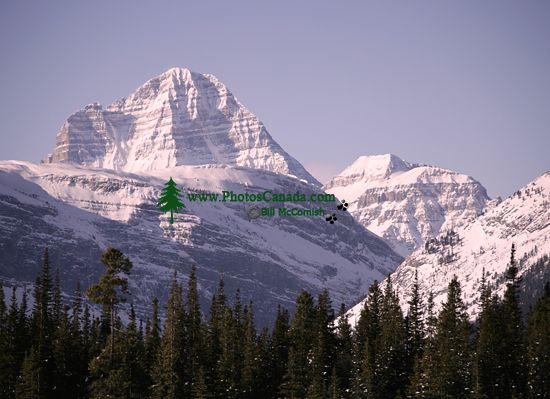 Kananaskis Country, Alberta, Canada, CM11-07