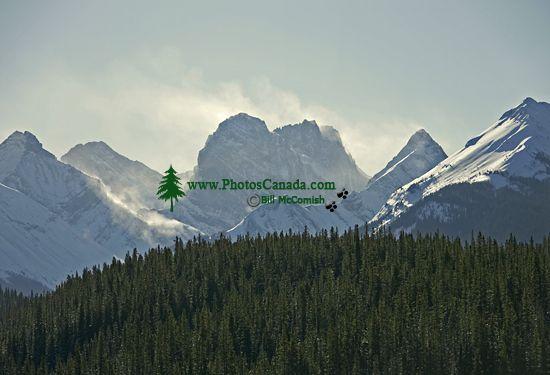 Kananaskis Country, Alberta, Canada, CM11-08