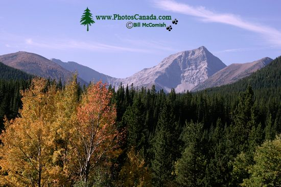 Kananaskis Region 2009, Alberta CM11-002