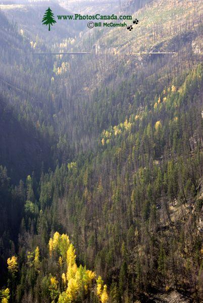 Kettle Valley Trestles, Kelowna, British Columbia, Canada CM11-004