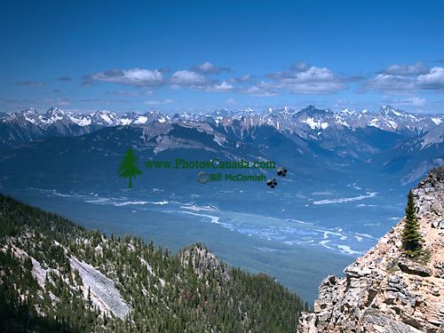 Kicking Horse Ski Resort, Golden, British Columbia, Canada CM11-03