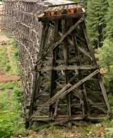Kinsol Trestle, Shawnigan Lake, Vancouver Island CM11-003
