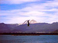 Kiteboarding, Squamish Harbour, British Columbia, Canada 10