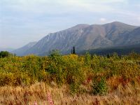 Kluane National Park, Yukon, Canada 04
