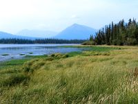 Kluane National Park, Yukon, Canada 03