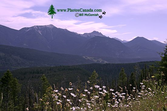 Kootenay National Park, 2011, British Columbia, Canada CM11-001