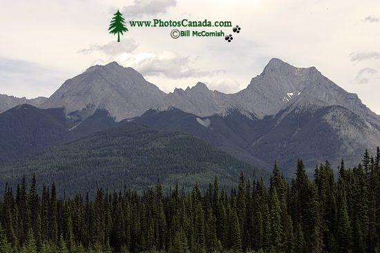 Kootenay National Park, 2011, British Columbia, Canada CM11-007