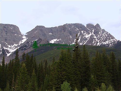 Kootenay National Park, British Columbia, Canada 03