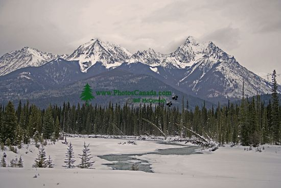 Kootenay National Park, British Columbia, Canada CM11-06