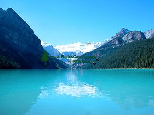 Lake Louise, Banff National Park, Alberta, Canada 03