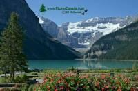 Highlight for Album: Lake Louise, Banff National Park of Canada Photos, Alberta, Canada