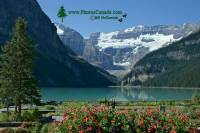Highlight for Album: Lake Louise 2009 - 2010 Photos, Alberta, Banff National Park, National Parks of Canada Stock Photos