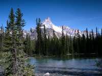 Lake O'Hara, Yoho National Park, British Columbia,Canada CM11-01